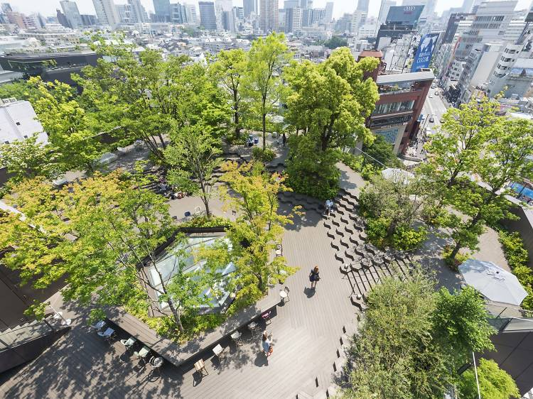 Best rooftop gardens in Tokyo