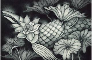 Metamorphose Kawai Shoko Exhibition