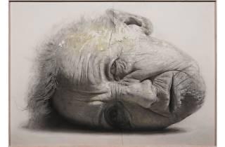 スペインの現代写実絵画