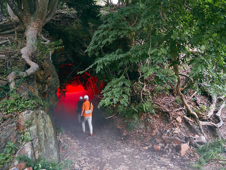 炎の洞窟を探検する。