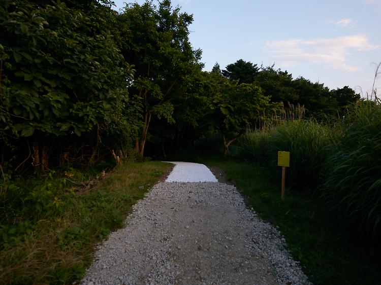 白い道に誘われる。