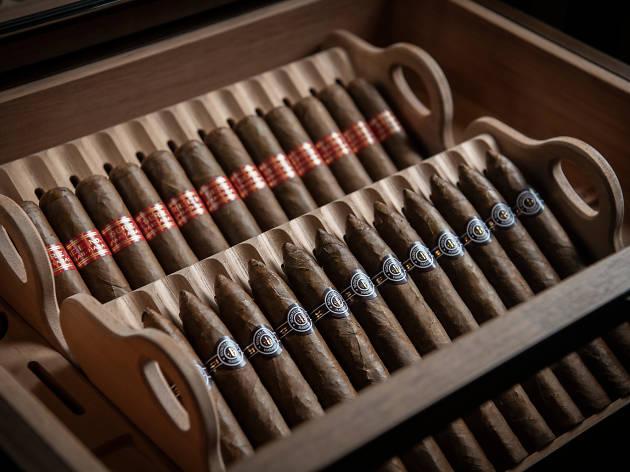 rosewood darkside cigars