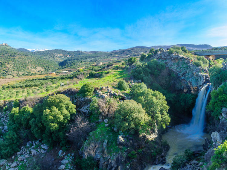 The best attractions in the Golan Heights