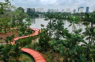 Jurong Lake Gardens