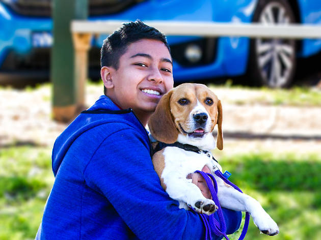 A boy holding a dog at Pawsitive Steps – Mind, Doggy and Spirit Festival.