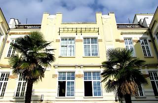 Rijeka university