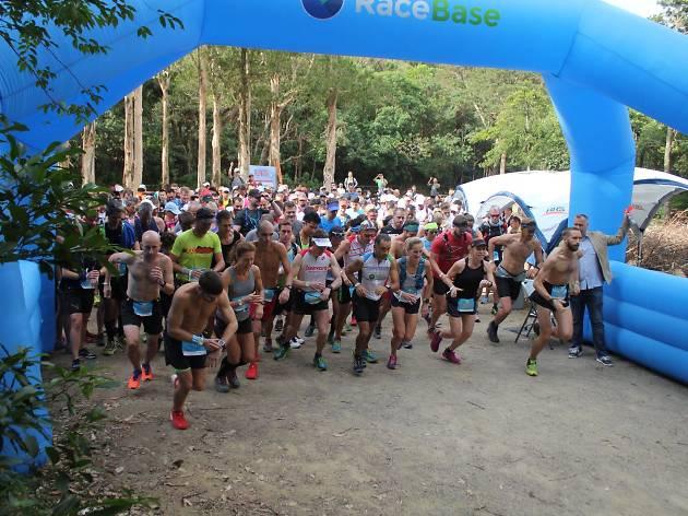 run hk charity race