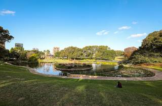 Wetlands at Victoria Park, Sydney