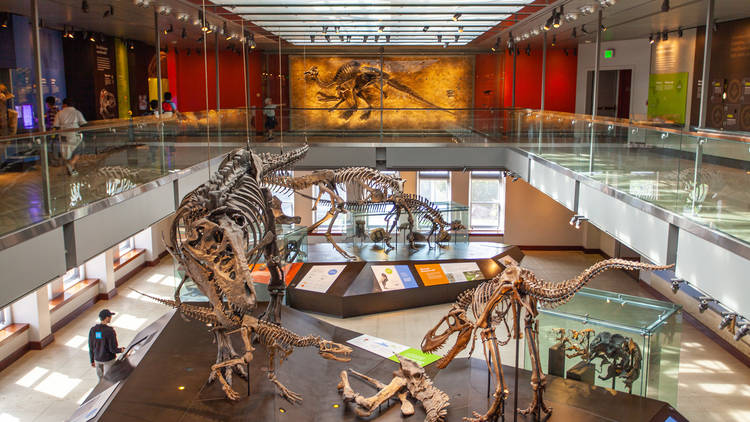 15 essential museums to visit in Los Angeles