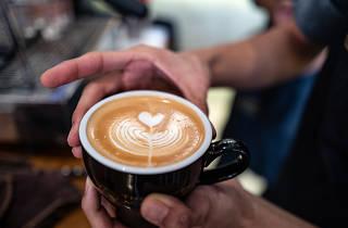 coffee academics workshop