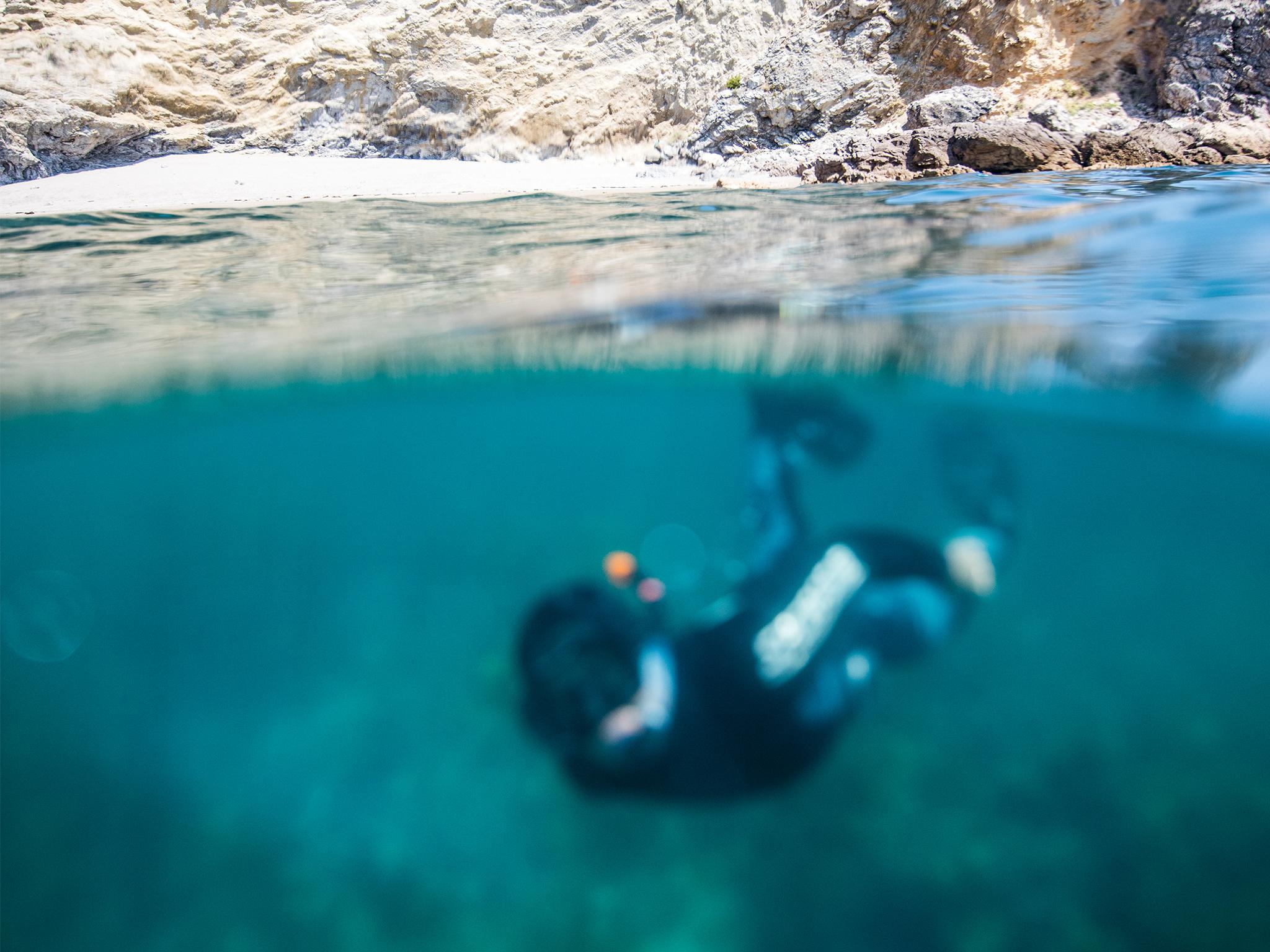 Snorkeling Arrábida