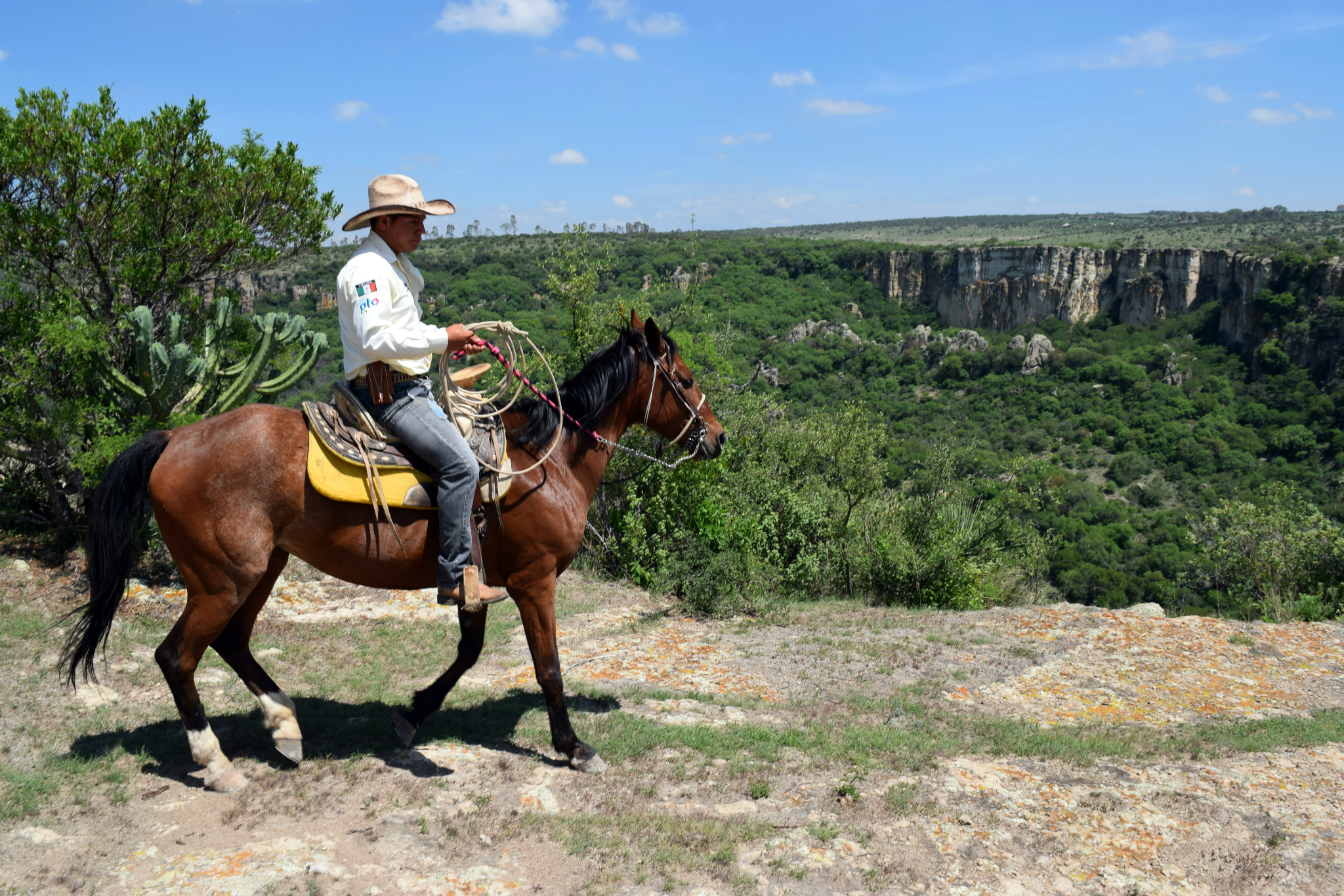 Recorrido sobre caballo en San Miguel de Allende, una experiencia de ecoturismo