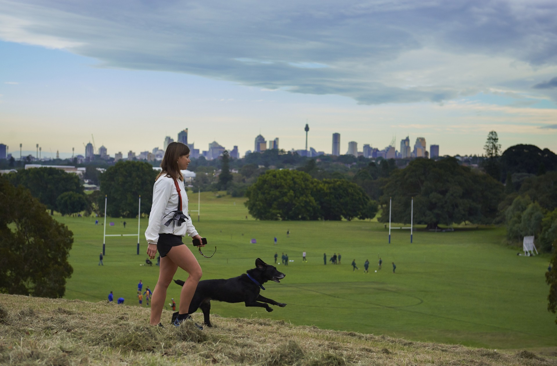 Woman walking dog at Moore Park with city skyline in the background