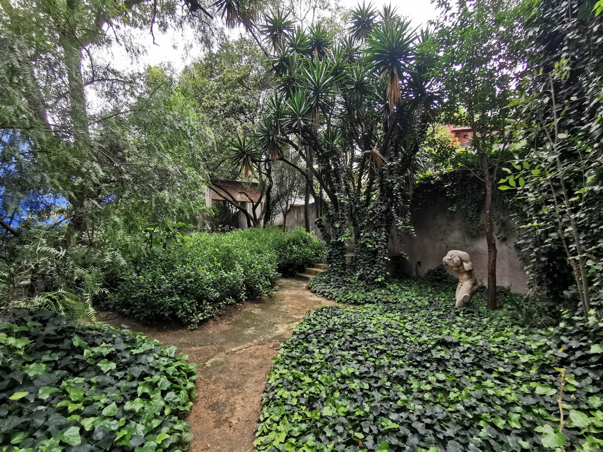 Jardín 17 Casa Barragán