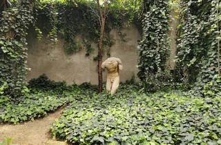 Jardín 17 Casa Barragán (Foto: Mariana Guillén)