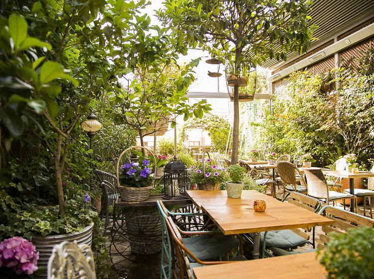 El Jardín Secreto de Salvador Bachiller
