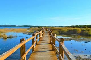 Vransko Lake, Biograd