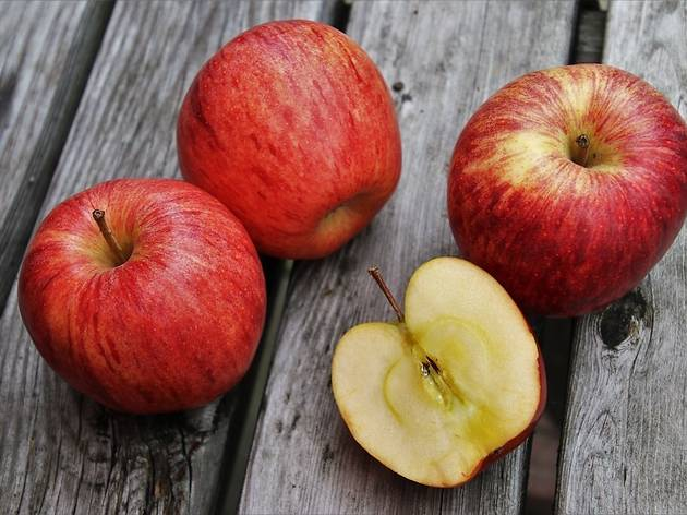Your guide to the best fall apple picking locations