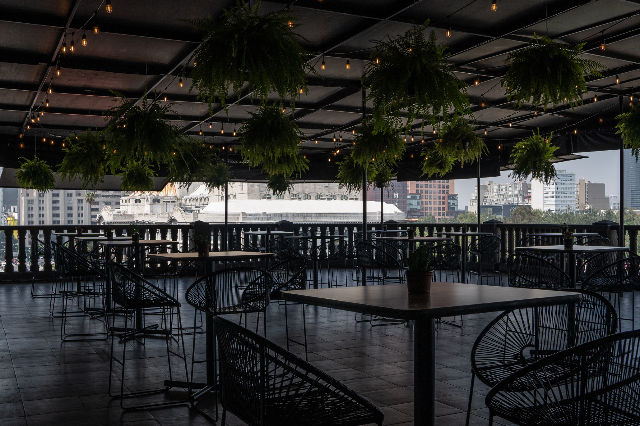 Los Fridos Café, nueva cafetería y terraza en el centro de la CDMX