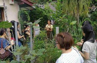 Garden to Table Edible Garden and Artisan Flavours