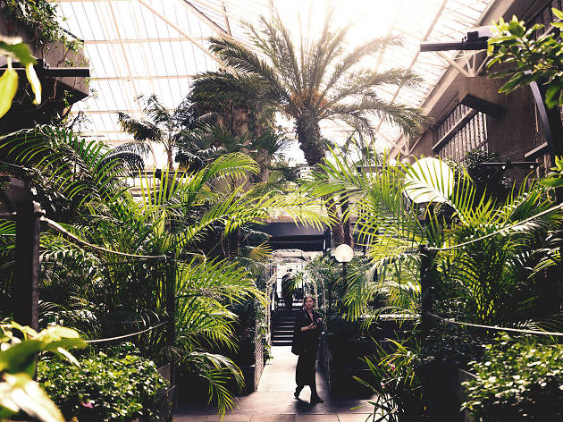 The Barbican Conservatory is opening on Saturdays for the first time – and there'll be a bar