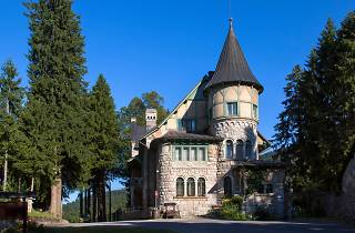 Stara Sušica Castle, Stara Sušica