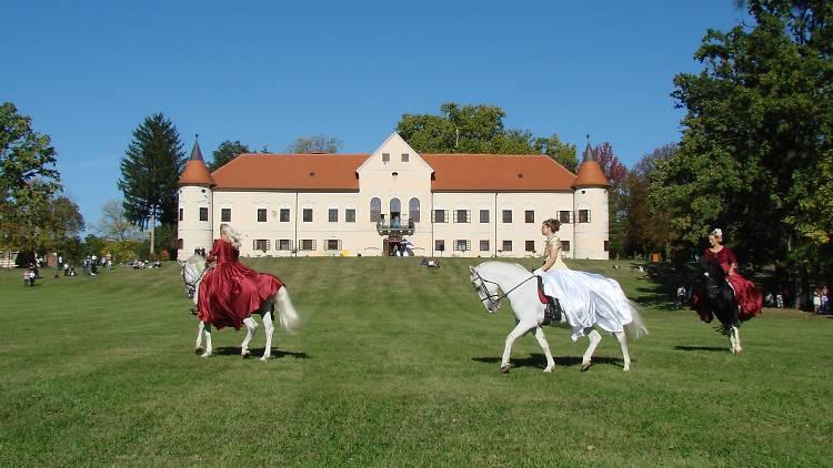 Lužnica Castle, Lužnica (Zaprešić)