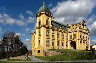 Pejačević Castle, Našice