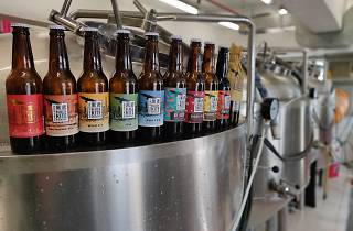 black kite_brewery tour