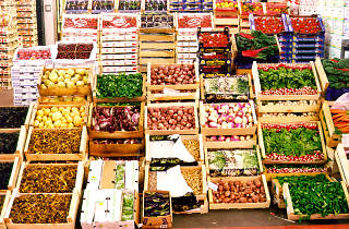 Wholesale produce at Rungis market