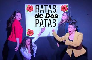 Ratas De Dos Patas