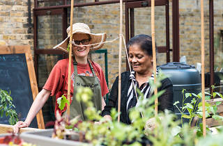 Capital Growth, London's food-growing network
