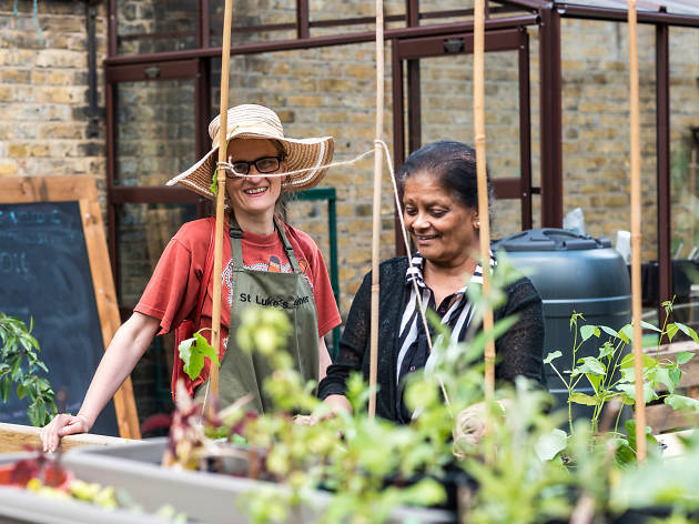 Capital Growth, London's food-growing network