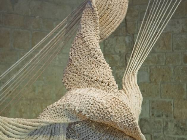 'Cometa ancorat', d'Aurèlia Muñoz
