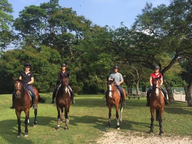 Bukit Timah Saddle Club