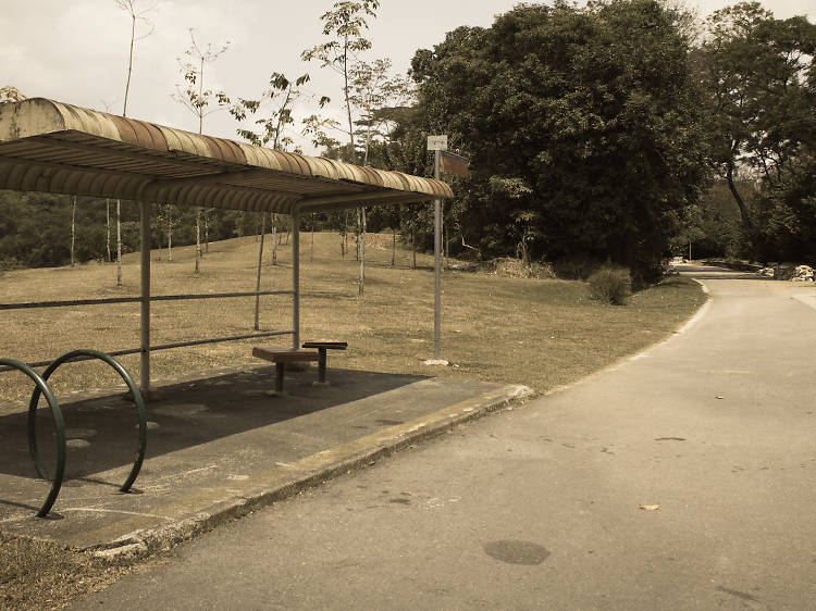 Old Tampines Road