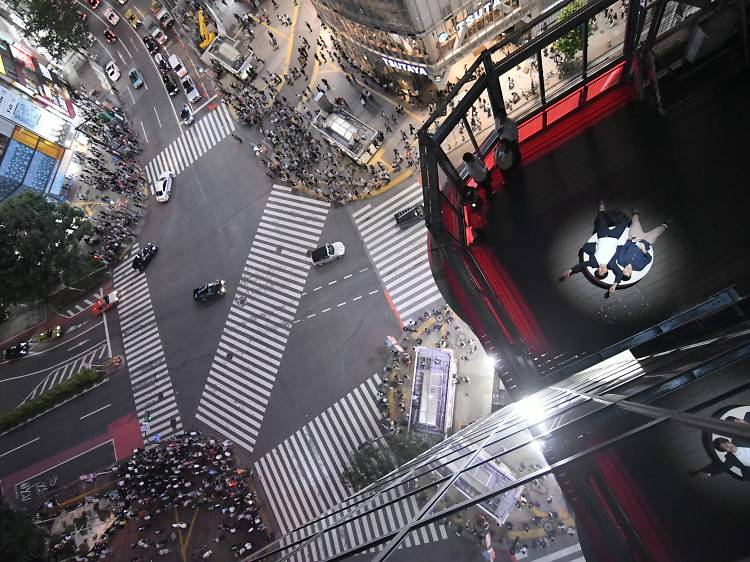Where to get the best views of the Shibuya Crossing