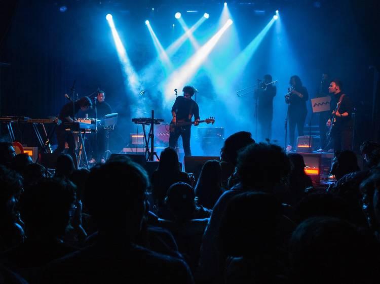 Porto Morto Yellow Concert