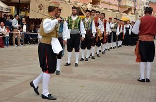 Vinkovci Autumn festival