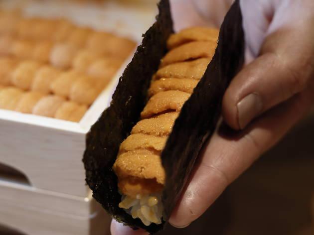 tominokoji-yamagishi_sea urchin dog
