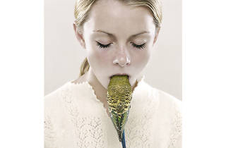 Petrina Hicks, Bleached Gothic 2019 supplied NGV