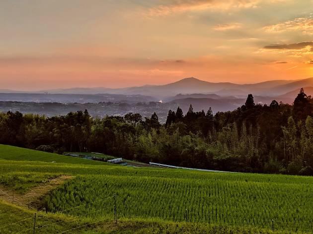 Sunset in Gifu