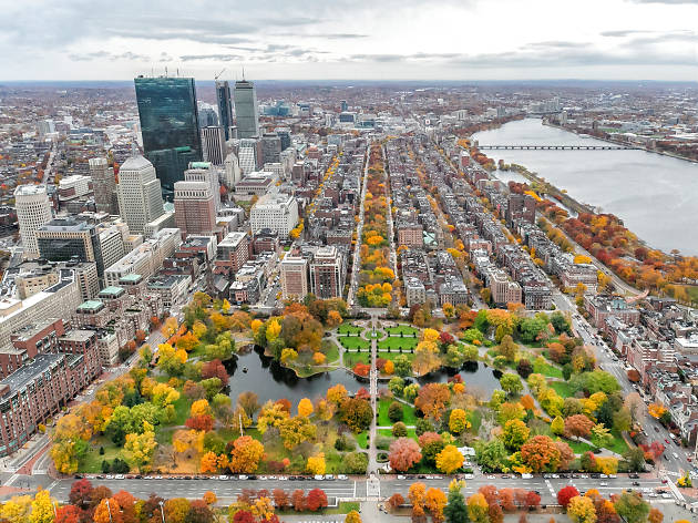 Boston fall foliage