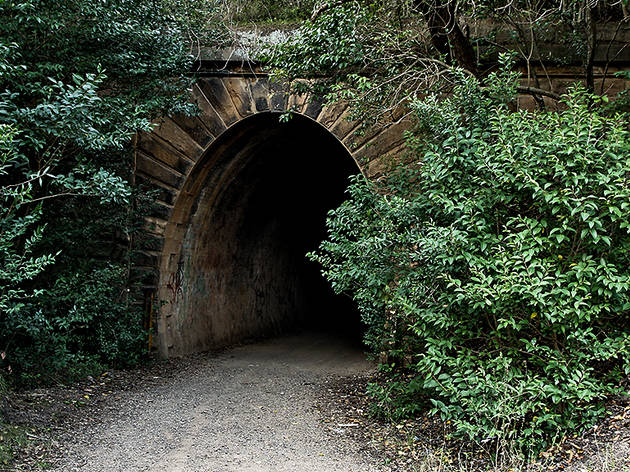 Western portal of disused railway tunnel (known locally as 'the Mushroom Tunnel' ) beneath Redbank Range formerly on the original Picton - Mittagong Railway line.