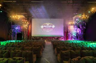 Back Yard Cinema: Winter Night Garden 2019