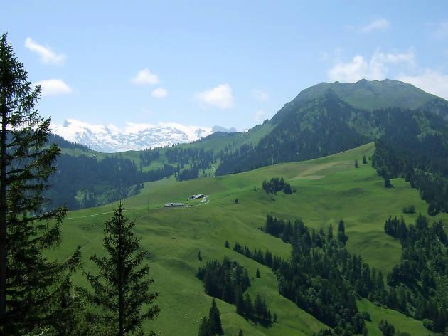 Wirzweli Witch Trail, Nidwalden, for hiking Zurich family feature
