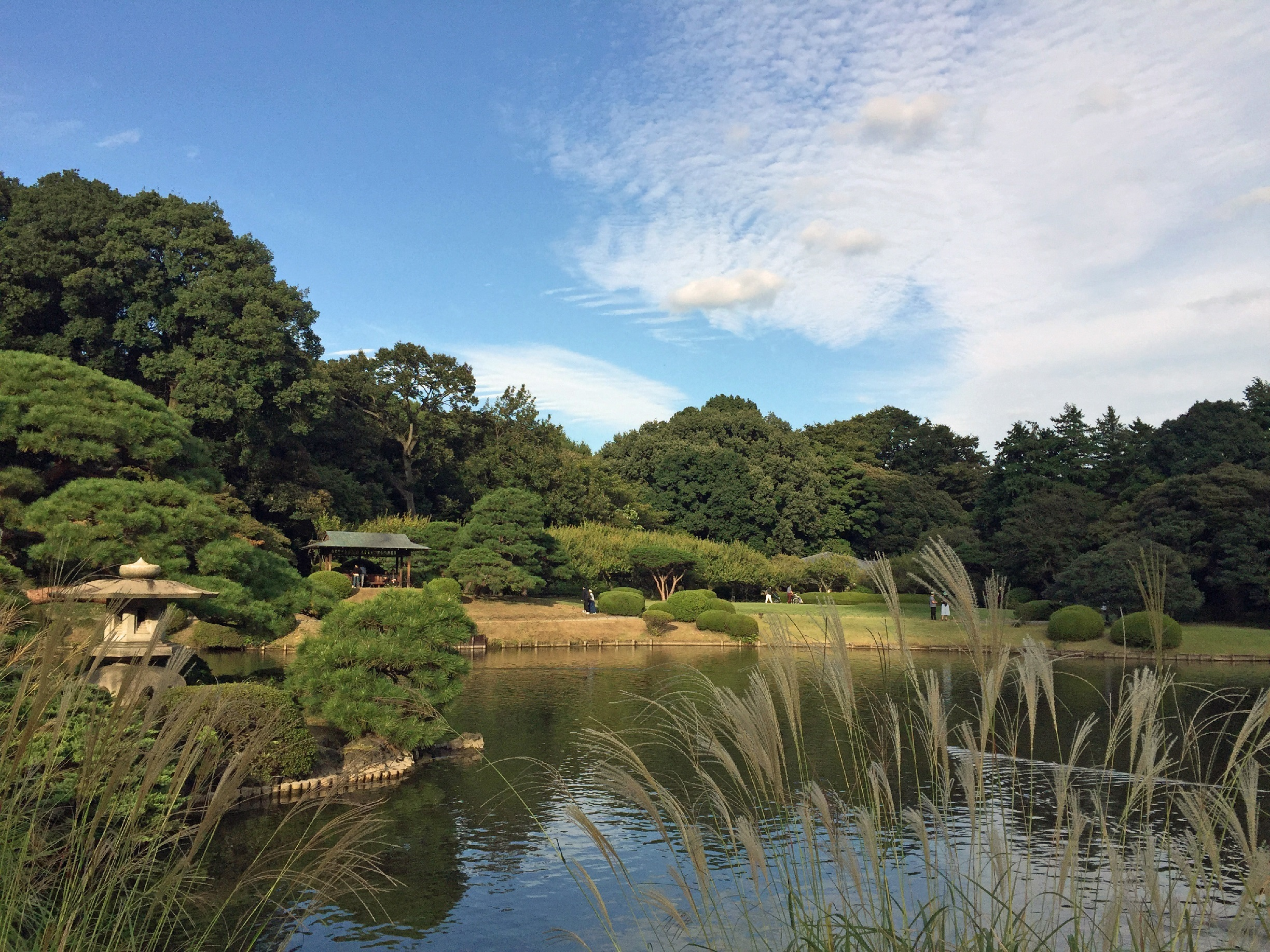 Major parks and gardens in Tokyo are temporarily closed due to Covid-19 coronavirus