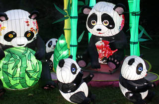 Sweet! The largest lantern festival in North America is headed to Citi Field
