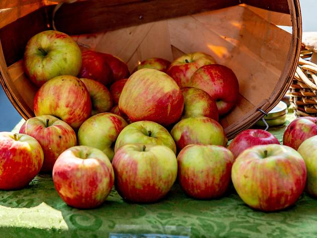 lincoln square apple fest 2020