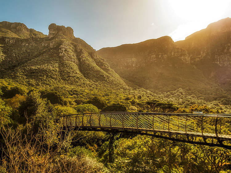 Kirstenbosch National Botanical Garden   Cape Town, South Africa